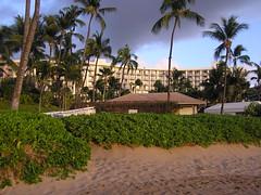 P1010364 (RaySorin) Tags: hawaii april2005