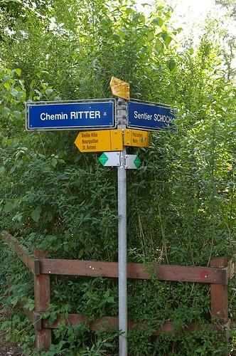 路標, 下方有綠色箭頭的是指健行步邊, 先生, 今晚你要選那條路呢? Dotch!