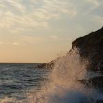 Graceful sea thumbnail