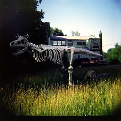 Lomo dinosaur (kevin dooley) Tags: camera house color 120 film home yard iso100 lomo lomography dinosaur michigan fake front velvia diana bones faux fujifilm medium format expired eclectic bizarre threeoaks