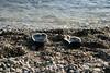 "Cantarrijan ""chanclas"" (Marco40134) Tags: beach spain andalucia naturist cantarrijan"
