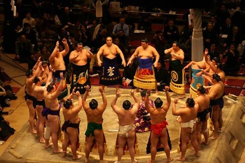 sumo artikkel (7)
