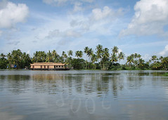 Backwaters - Alappuzha (Alleppey) (SibyMathew:)) Tags: backwaters alleppey alappuzha