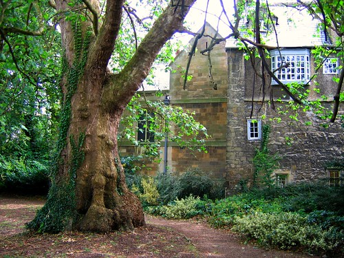 Inside New College, Oxford, and its Gardens