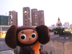Cheburashka in Yuen Long