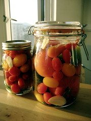 (mariko) Tags: dill pepper tomatoes brine garlic heirloom pickles canning pickling