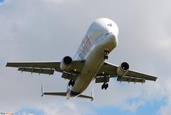 Airbus A300-600ST Airbus Industries (AIB) Beluga 4 F-GSTD - MSN 776 (Luccio.errera) Tags: aib 4 airbus msn beluga industries 776 a300600st fgstd