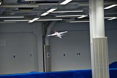 _DSC3344 (froller) Tags: plane toy nikon18200mm nikond300