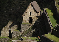 Machu Picchu 11 (al-ien) Tags: peru inca stonework historic civilization machupicchu lostcityoftheincas sevenwondersoftheworld