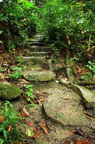 Welcome to Gunung Ledang National Park | Flickr - Photo Sharing!