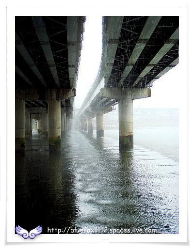 081108Miruku雨天行進曲13_從橋下看滂沱大雨