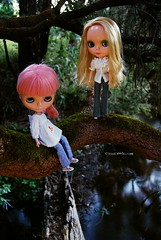 Brunnie and Hedera are so daring 43/365