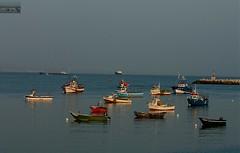 sea portugal boats fishing cascais