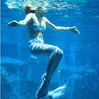 mermaid swimming