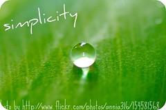 simplicity_annia316