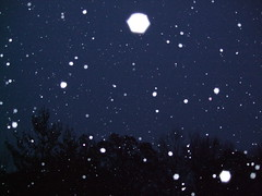 Twinkle Twinkle Little Snow
