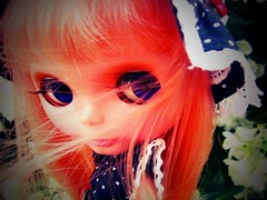 52 Weeks of Blythe :~: 48 (svohljott) Tags: hair lomo doll windy rosebud lolita eden blythe sbl mrb mademoisellerosebud dumpr 52weeksofblythe outfitisnicoles