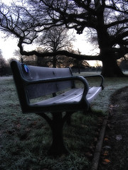 Frosty Bench (pamcodner) Tags: park trees winter fog bench frost distillery naturescreations