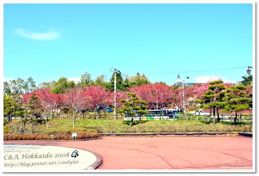 Hokkaido_2331