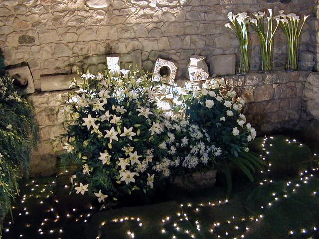 Girona: Flors