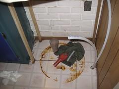 Anglų lietuvių žodynas. Žodis water-heater reiškia n vandens šildytuvas, virintuvas lietuviškai.