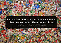 litter begets litter (Will Lion) Tags: people science rubbish waste decision psychology cognition behaviour cognitive brokenwindowstheory mindbites