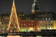 Gott Nytt r (Happy New Year) Stockholm 2009 (Mas Tok) Tags: longexposure winter water fireworks stockholm newyear fi 2009 1224mm nyttr 70200mm d300 18200mm smllaren
