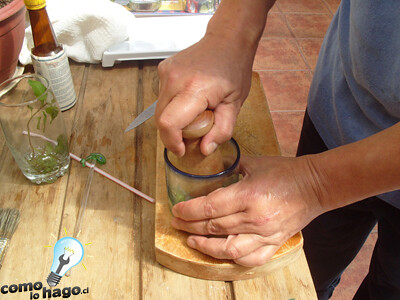 Macerar la hierba - Cómo hacer mojitos