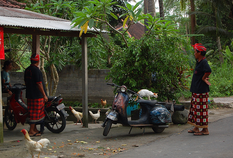 _Bali_village_2_