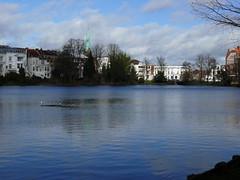 Mühlenteich Lübeck-Innenstadt am 3.3.2008 (naturgucker.de) Tags: deutschland lbeck naturguckerde schleswigholsteinhamburg cchristopherengelhardt mhlenteichlbeckinnenstadt ngidn1170594045