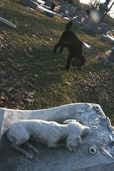 (Jean Arf) Tags: dog monument cemetery statue rochester astrid poodle gravestone standardpoodle gravemarker southwedge mounthope mounthopecemetery 14620 victoriancemetery ellwangerbarry