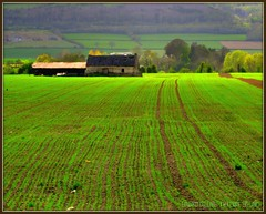 EMERALD ISLE (Edward Dullard Photography. Kilkenny, Ireland.) Tags: ireland light irish green nature landscape ruins scenery irland eire lush emeraldisle irlanda ierland fertile abigfave edwarddullard