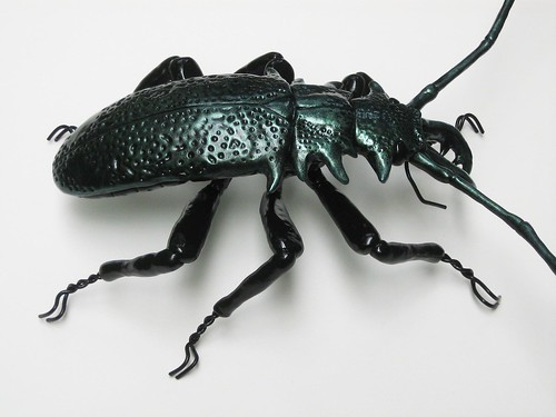 New Green Beetle 012