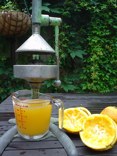 Quality juicers inexpensive high