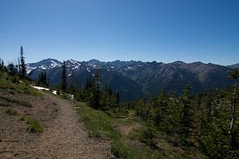 Olympic mountain views from Marmot Pass, elev. 6000 Photo