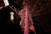Nachtklettern im Kletterwald Dresdner Heide