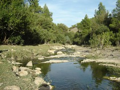 Médéa - Tamesguida (intasko) Tags: tree green nature water algeria spring eau rest algerie blida medea alger algerois tamezguida tamesguida