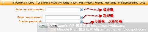 webp2p-09.jpg