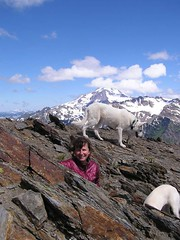 Joanna and 1 1/2 Bad dogs on summit