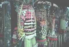Indonesia 25Oct80 Bali (Wanderlust676) Tags: bali indonesia offerings bedulu