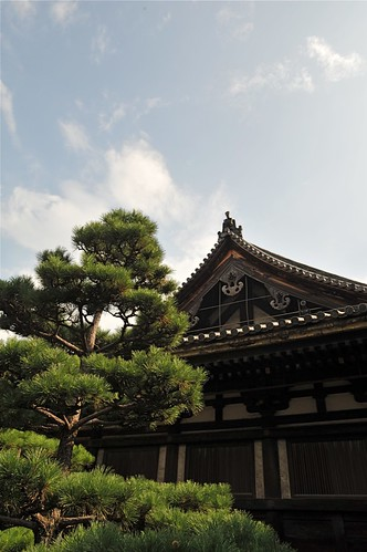Kyoto 2008 - 三十三間堂(1)