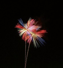 Red and Blue and Gold Palms (EpicFireworks) Tags: stars fireworks firework pyro 13g epic barrage pyrotechnics sib