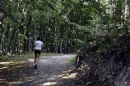 BĚH PRO MANAŽERY: Máte všeho plné zuby? Jděte si zaběhat!