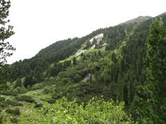 IMG_1503 - Nationalpark Hohe Tauern - Krimmler Wasserflle (thisisbossi) Tags: austria sterreich nationalparkhohetauern krimmlerwasserflle