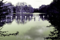 University of Nottingham lake (SurfaceSpotting) Tags: nottingham uk lake color colour water colors nikon university colours purple spooky infrared d40 michaelides d40x goldstaraward surfacespotting georgemichaelides