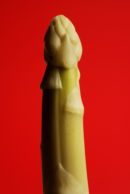 white asparagus© by Haalo