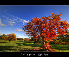 Old Ashburn's 18th hole (Dave the Haligonian) Tags: blue autumn red sky orange tree fall leaves club clouds golf leaf maple pond oak course rake chip links hdr putt hdri toomany supershot oldashburn anawesomeshot ubej oldashburns18thhole mylostgolfballs phew18thholealmosttimeforabeer