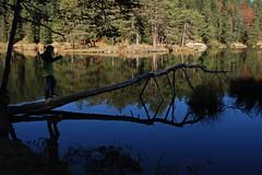 Balance (Erwin Vindl) Tags: trees light lake water silhouette reflections austria tirol nikon balance ju d80 mserersee