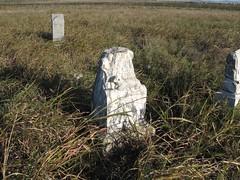 Wyatt Cemetery - Near Gotebo, OK