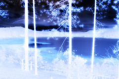 Winter Fantasy (Tonym1) Tags: christmas trees winter natal weihnachten landscape navidad noel natale waterlandscape